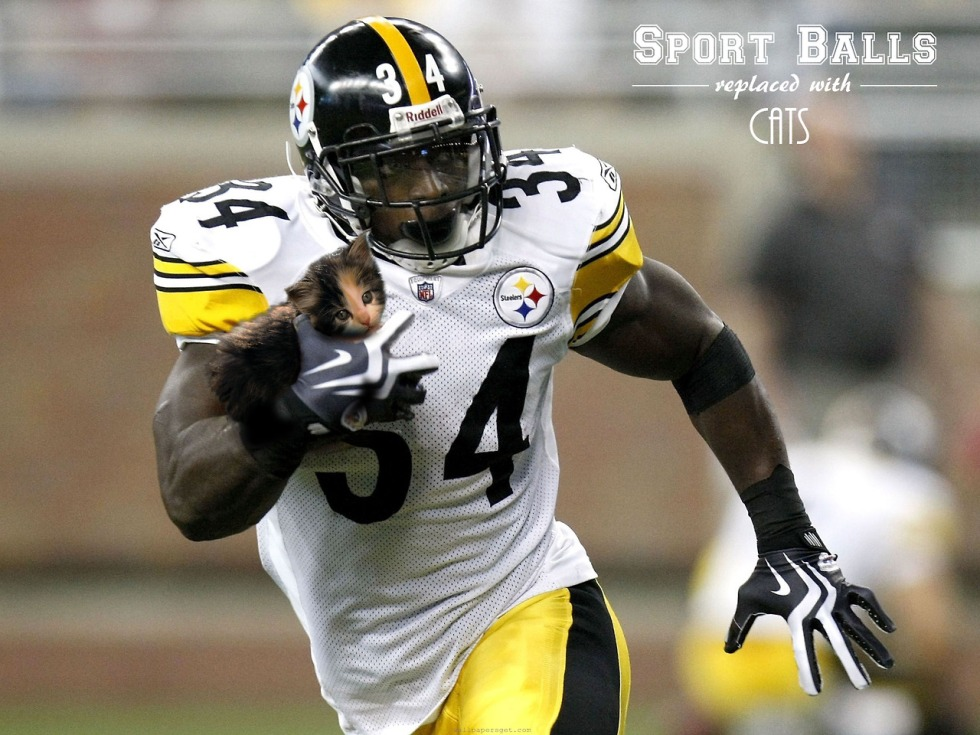NFL Football player, a running back for the Pittsburgh Steelers, is running down the field with the ball. We can see him from his waist up. He is mid stride, with one arm back, the other tucking the ball into his body. Except the ball has been replaced by a cute kitten.